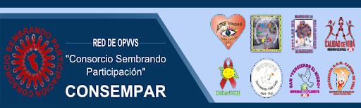 CONSORCIO SEMBRANDO PARTICIPACIÓN  CONSEMPAR - PERÚ
