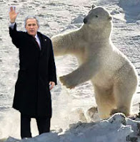 Polar bear vs. President