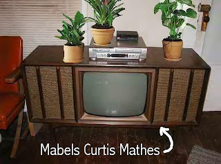 Curtis Mathis Console TV with plants on Top