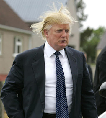 donald trump crazy hair swooped hair big hair