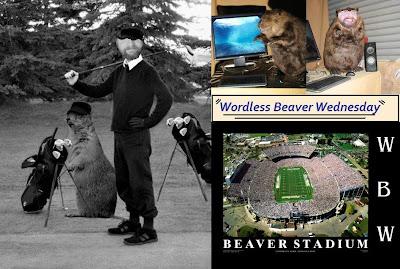 Wordless Beaver Wednesday