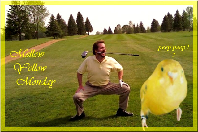 yellow shirt golf nut