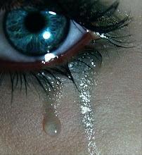 amor no es aquello que queremos sentir sino aquello que sentimos sin querer.