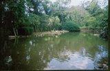 Lagoa Catarina...
