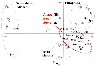 Palestinians and Syrians at the center of the Jewish gene pool
