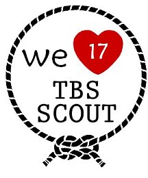 WE ARE PROUD AS A SCOUT !
