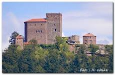 Pfalz Bild