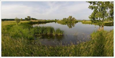 Оскол перед Купянском (панорама)