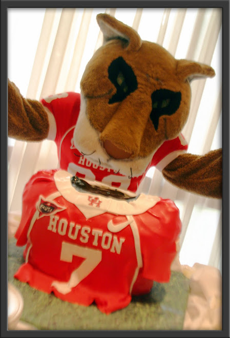 U of H Wedding - Groom's Cake