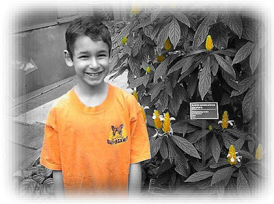 black and white photo of a boy against a plant, with his shirt and the flowers coloured orange