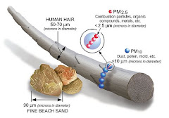 PM 2,5 ESTREMAMENTE PICCOLE MA ESTREMAMENTE PERICOLOSE PER LA NOSTRA SALUTE