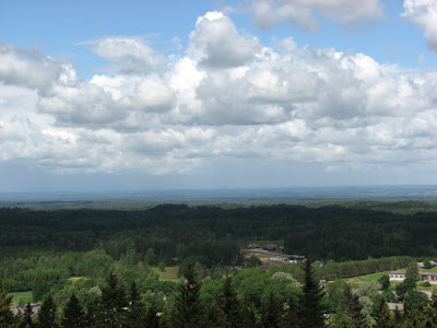 A view from Munamagi hill