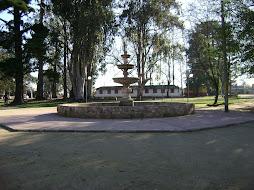 Visite PANIMAVIDA