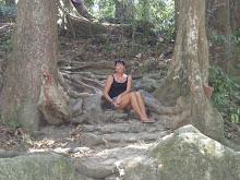 I skogen ... Men ikke alene. . . .
