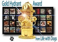 Gold Hydrant Award