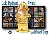 Gold Hydrant Award
