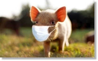 I've got Piglet Flu!