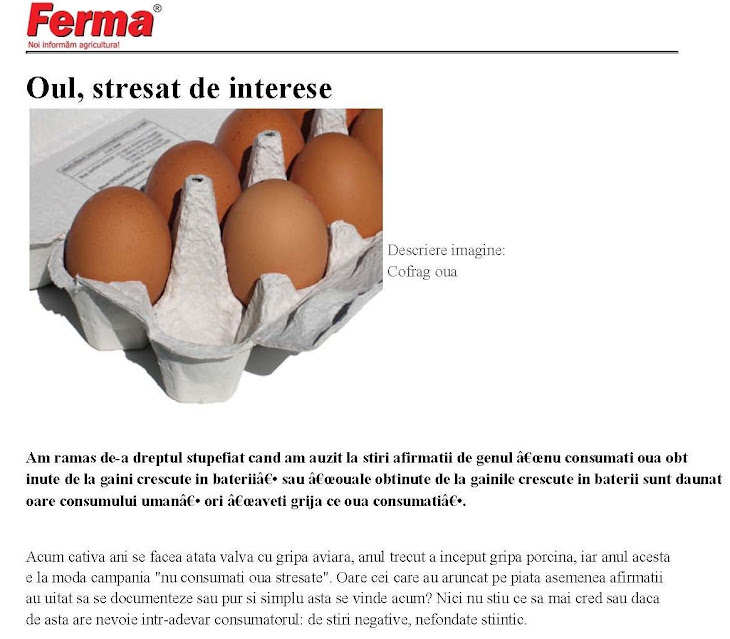 Oul, stresat de interese