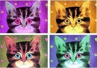 4 katter