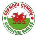 Backing Wales