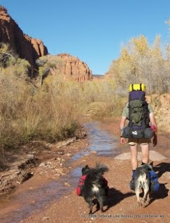 foto en www.squidoo.com/backpackingdog