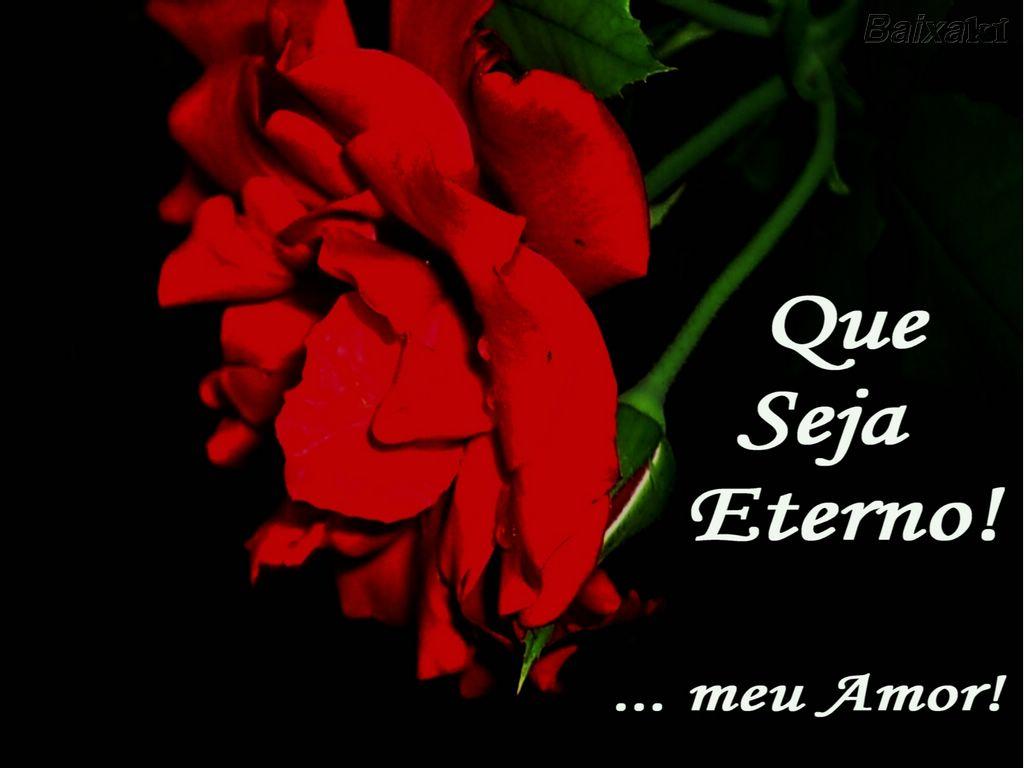 [BXK17007_rosa-vermelha_meu-amor_brasil_sp_jundiai_serra-do-japi_p.prd17007_by-bbelle800]