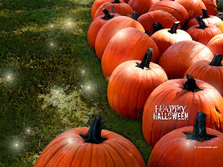 Pumpkin Patch Wallpapers
