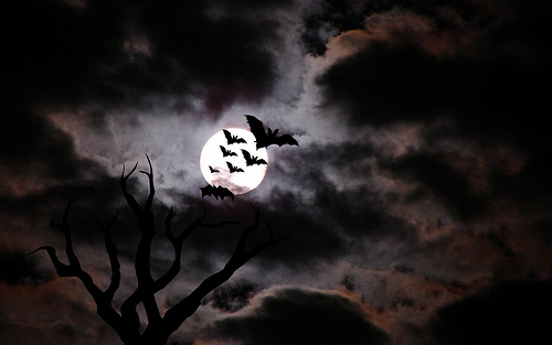 halloween wallpaper. Halloween Holiday Wallpaper