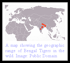 Bengal Tiger distribution
