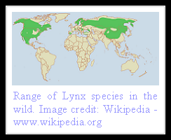 Lynx Distribution
