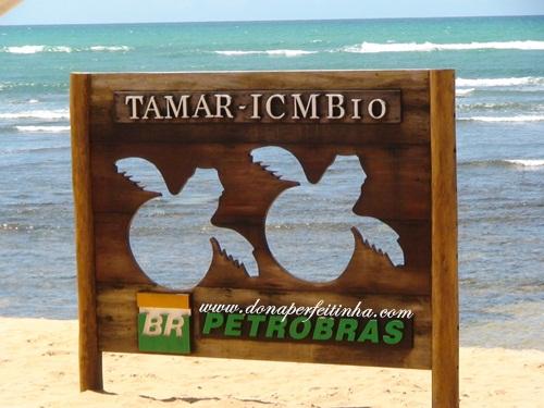Projeto Tamar na Praia do Forte, na Bahia