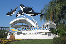 Sea World -2009
