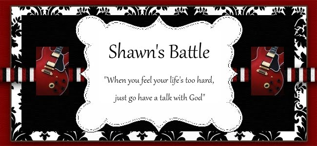 Shawn's Battle