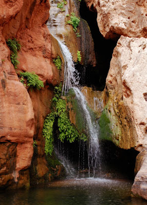 Elves Chasm Grand Canyon Colorado River rafting by Jeanne Selep