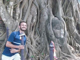 buddha in tree ayuthaya