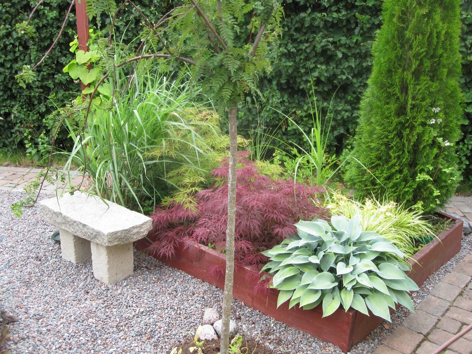 Trädgård Grus : Trädgårdstina syrrans trädgård