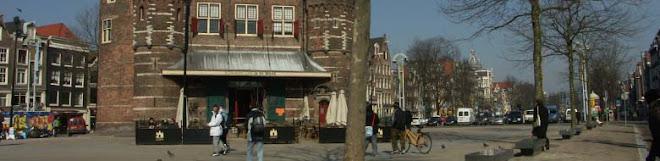 Kiwis In Amsterdam