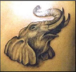 animal tattoos design