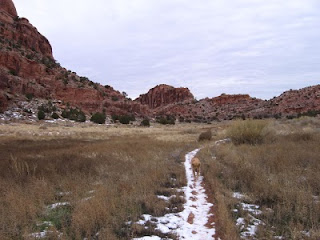 Scout on the Hidden Valley trail, with the petroglyph wall in the distance