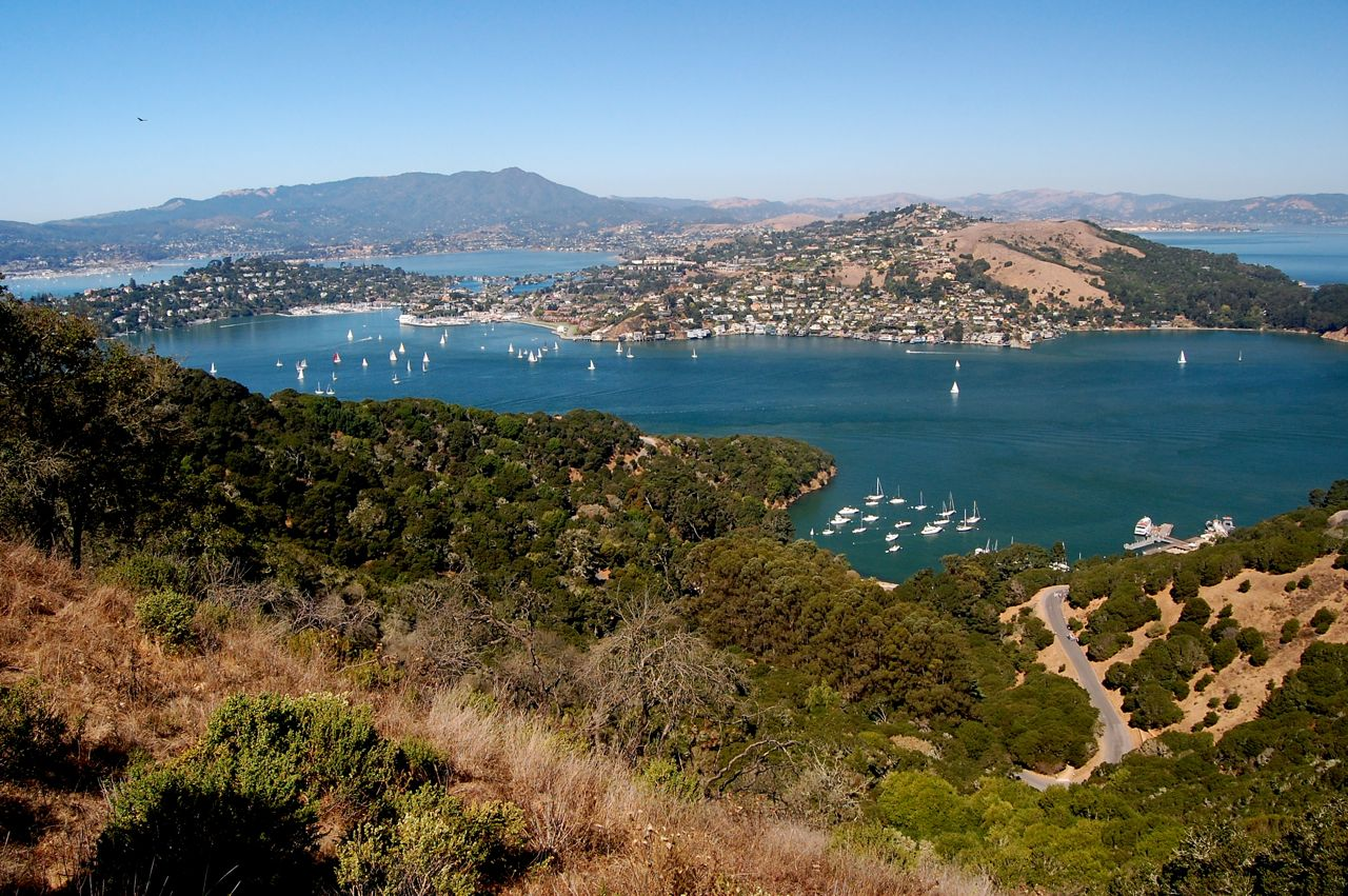 angel island Our community our island our legacy angel island conservancy // po box 866 / tiburon / ca 94920 // 4154353972 // info@angelislandorg // facebook // flickr.