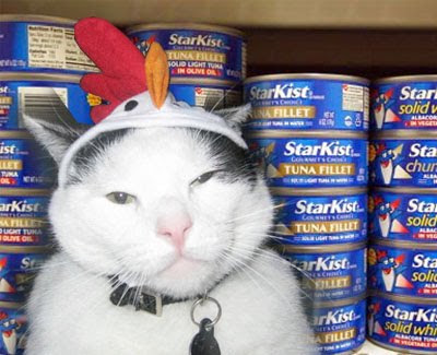 Cat with Hat Tuna Thief