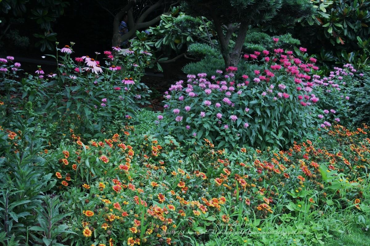 Southeast Florida Garden Evolvement China Trip Part 1