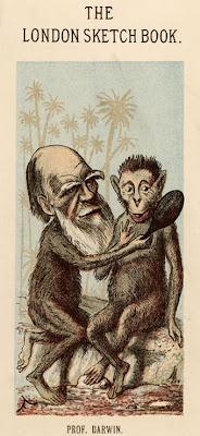 Darwin caricature 1874