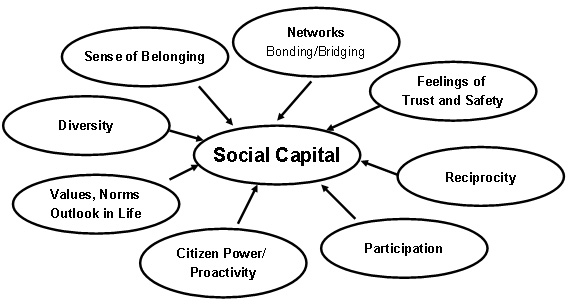 Social Capital Review Of The Literature Social Capital