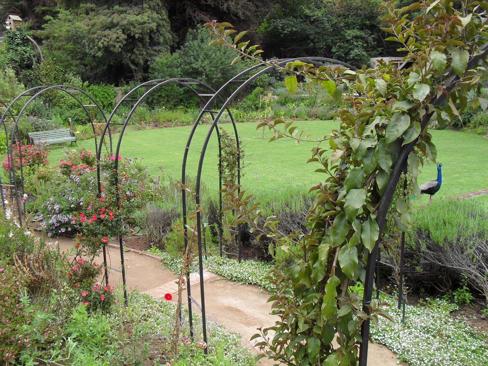 Pedro alemparte estructuras metalicas arcos jard n - Arcos de jardin ...