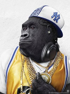 albino gorilla wikipedia
