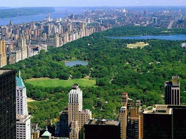 Central Park desde el aire.