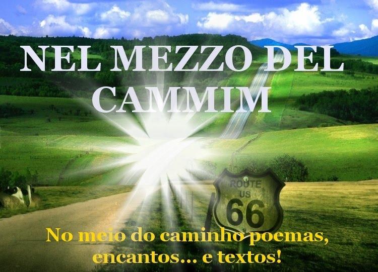 NEL MEZZO DEL CAMMIM