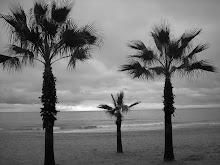 Las tres palmeras.