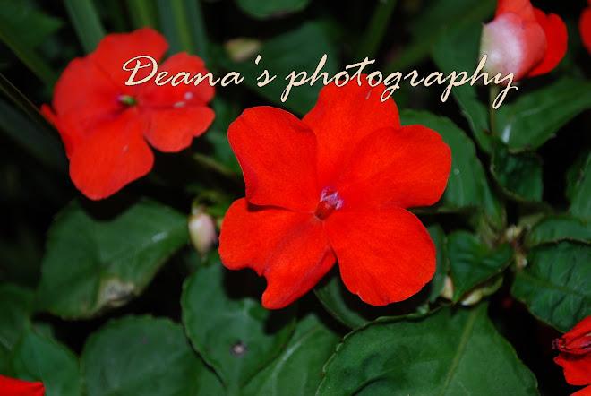 Deanasphotography